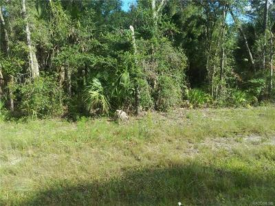0 193RD PLACE, Inglis, FL 34449 - Photo 2
