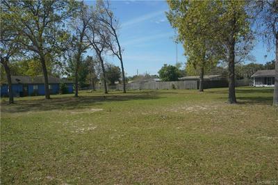 0 DOLPIN DR, SUMMERFIELD, FL 34491 - Photo 2