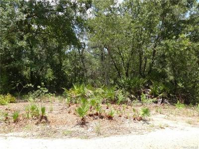 5020 N SMOKEY MOUNTAIN PT, Crystal River, FL 34428 - Photo 2
