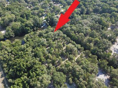 11187 N WITHLA BLUFF PT, Inglis, FL 34449 - Photo 2