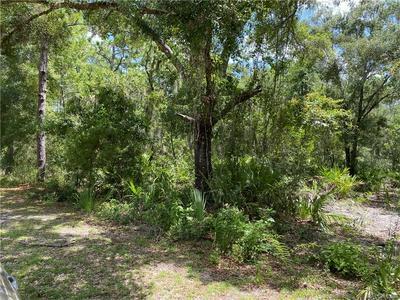 459 N CANDLE PT, Crystal River, FL 34429 - Photo 2
