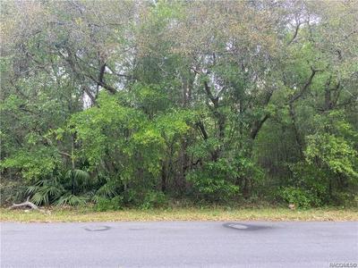 1253 E WINNETKA ST, Hernando, FL 34442 - Photo 2