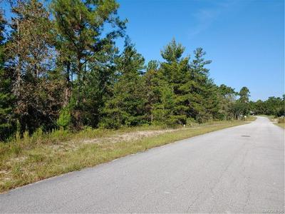 6 HEUCHERA CT E, Homosassa, FL 34446 - Photo 1