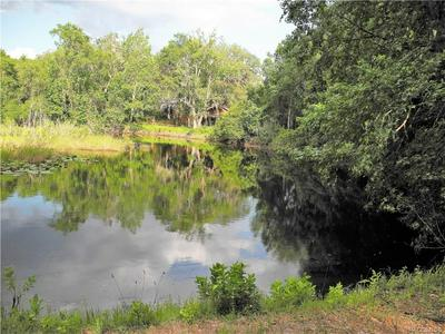 1179 N POINT LONESOME RD, Inverness, FL 34453 - Photo 2
