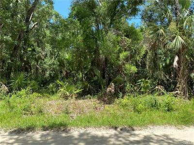 166 N CANDLE PT, Crystal River, FL 34429 - Photo 1