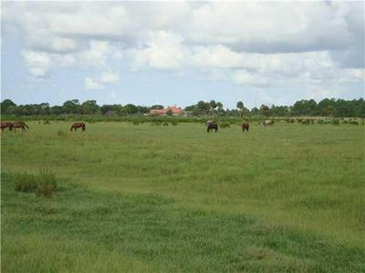 7405 SW KANNER HWY, Indiantown, FL 34956 - Photo 1