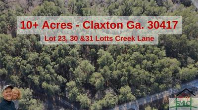 LOT 29, Claxton, GA 30417 - Photo 1