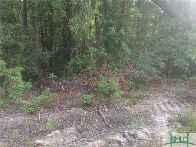 0 FRAZIER DRIVE, Riceboro, GA 31323 - Photo 2