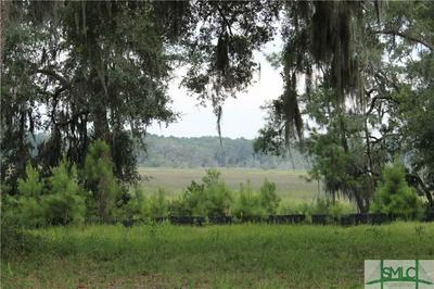 0 HAMPTON FERRY ROAD, Riceboro, GA 31323 - Photo 1