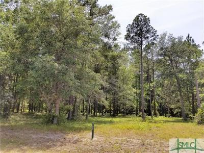 LOT 722 COOPER'S POINT, Townsend, GA 31331 - Photo 1