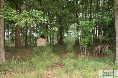0 HAMPTON FERRY ROAD, Riceboro, GA 31323 - Photo 2