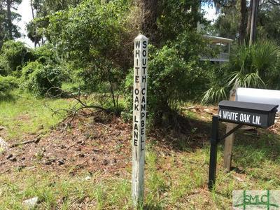 0 WHITE OAK LANE, Savannah, GA 31328 - Photo 1