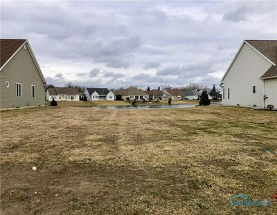 9928 CHARLES GLEN LN, WHITEHOUSE, OH 43571 - Photo 2