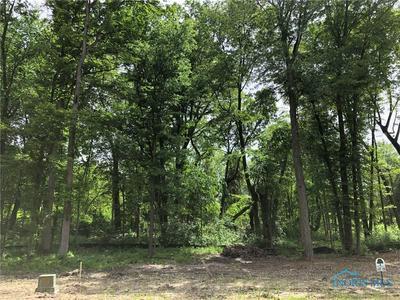 11141 PRESERVE BLVD, WHITEHOUSE, OH 43571 - Photo 1
