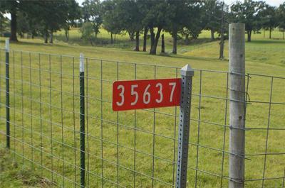 1175 ROAD, SEMINOLE, OK 74868 - Photo 1
