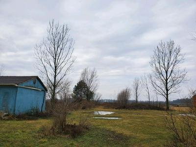 0 MOULTON FORT AMANDA ROAD, WAPAKONETA, OH 45895 - Photo 1
