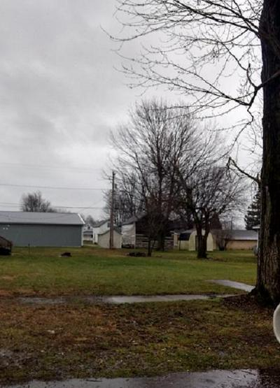 306 N MCCONNELL ST, Alger, OH 45812 - Photo 2