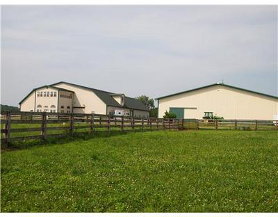 6875 MINGO LEWISBURG RD, North Lewisburg, OH 43060 - Photo 1