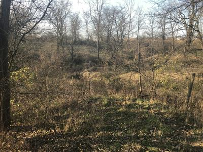 0 S TOWNSHIP RD 32, West Liberty, OH 43357 - Photo 2