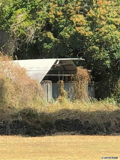 KAUPO GAP RD, Hana, HI 96713 - Photo 2