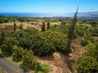 2347 KAMAILE ST UNIT: LOT 180, WAILUKU, HI 96793 - Photo 2