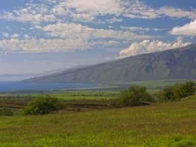 30 OPALIPALI PL, Kula, HI 96790 - Photo 1