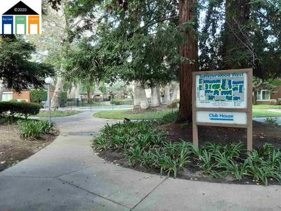 3055 TREAT BLVD APT 1, Concord, CA 94518 - Photo 2