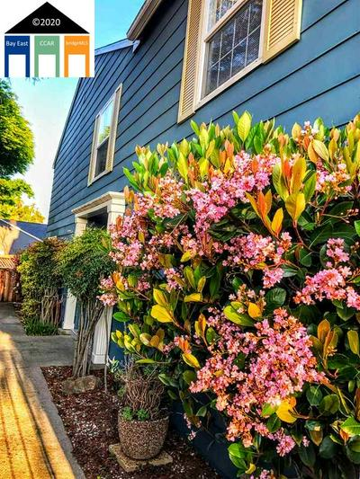 19983 SANTA MARIA AVE APT 301, Castro Valley, CA 94546 - Photo 2