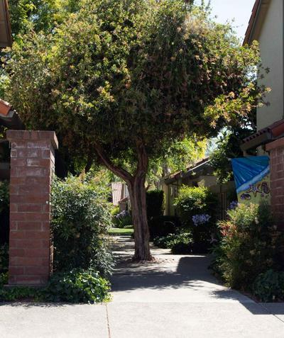 1664 CALLE SANTIAGO, Pleasanton, CA 94566 - Photo 1