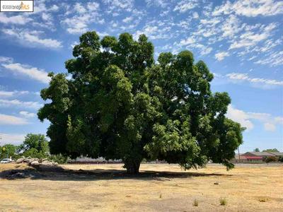 3740 WALNUT BLVD, BRENTWOOD, CA 94513 - Photo 1
