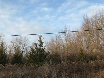 3553 COUNTY ROAD 25, Cardington, OH 43315 - Photo 2