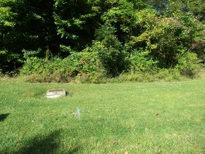 0 CHARLES CT LOT 1866, Lexington, OH 44904 - Photo 2