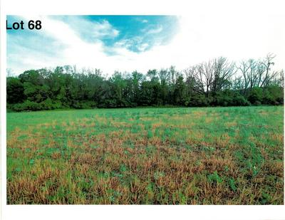LOT 68 THE CLEARINGS, Kohler, WI 53044 - Photo 2