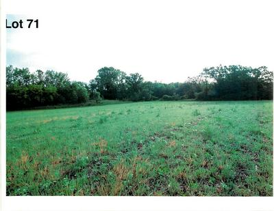 LOT 71 THE CLEARINGS, Kohler, WI 53044 - Photo 2