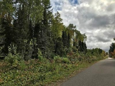 3.67 ACRES ROSS LAKE RD, Caswell, WI 54511 - Photo 2