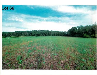 LOT 66 THE CLEARINGS, Kohler, WI 53044 - Photo 2