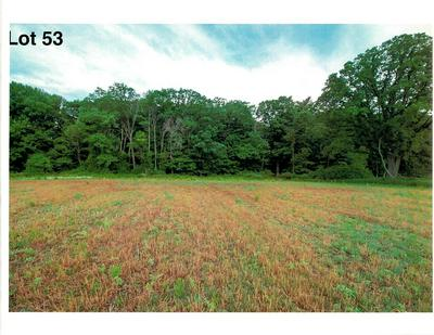 LOT 53 THE CLEARINGS, Kohler, WI 53044 - Photo 2