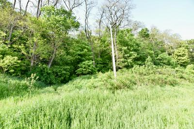 LOT 0 STATE ROAD 54/93, Trempealeau, WI 54630 - Photo 1