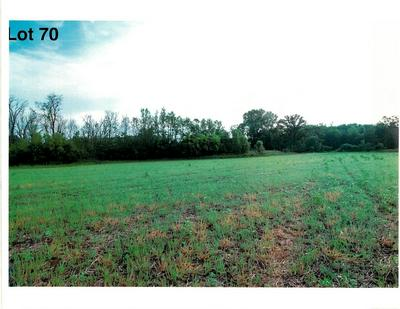 LOT 70 THE CLEARINGS, Kohler, WI 53044 - Photo 2
