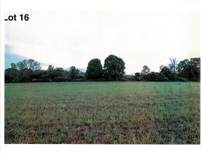 LOT 16 THE CLEARINGS, Kohler, WI 53044 - Photo 2