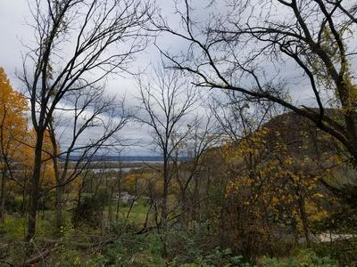 500 HIAWATHA HLS, Dakota, MN 55925 - Photo 2
