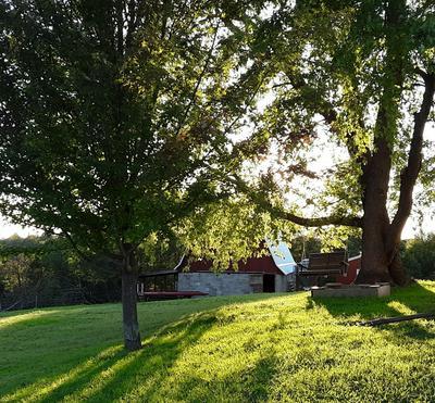 S7637 MOORE RD, Kickapoo, WI 54652 - Photo 2