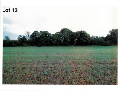 LOT 13 THE CLEARINGS, Kohler, WI 53044 - Photo 2