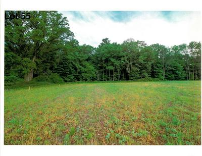 LOT 55 THE CLEARINGS, Kohler, WI 53044 - Photo 2