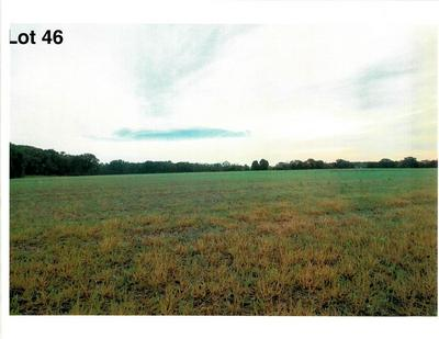 LOT 46 THE CLEARINGS, Kohler, WI 53044 - Photo 2