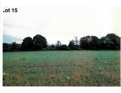 LOT 15 THE CLEARINGS, Kohler, WI 53044 - Photo 2