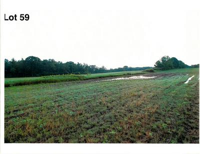 LOT 59 THE CLEARINGS, Kohler, WI 53044 - Photo 2