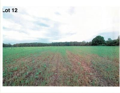 LOT 12 THE CLEARINGS, Kohler, WI 53044 - Photo 2