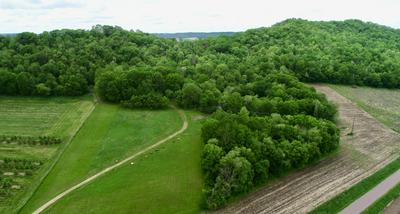 29.7 AC GROVER LN, Trempealeau, WI 54630 - Photo 1