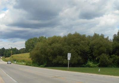 LT1 COUNTY ROAD P, Rubicon, WI 53078 - Photo 2